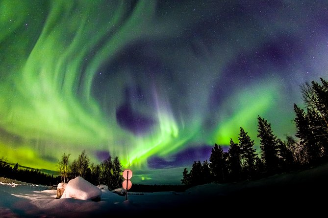 Hunt for the Northern Lights in Murmansk