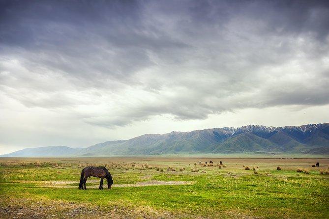 Mountain gorges of Kyrgyzstan