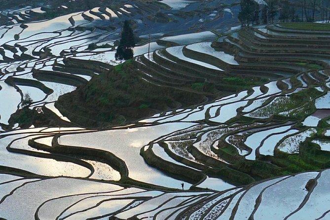 Private 5-Day Guilin Tour featuring Li River, Rice Terraces & Biking in Yangshuo