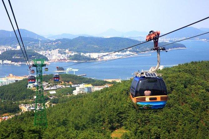 7-Day Best Private Tour from Busan:Tongyeong, Sucheon, Damyang, Gwangju