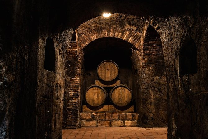 Frascati area winery tour and tasting in a beautiful, historic Estate. photo 7