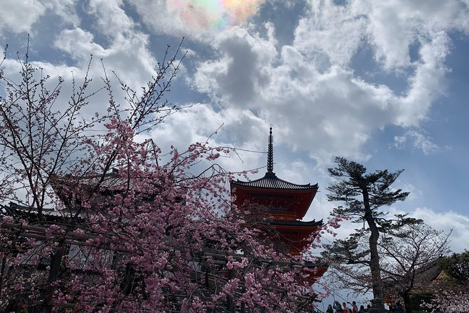 Kyoto-Nara One-day tour