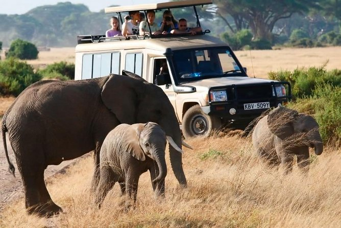 3 Days Small Group Budget Tour To Maasai Mara