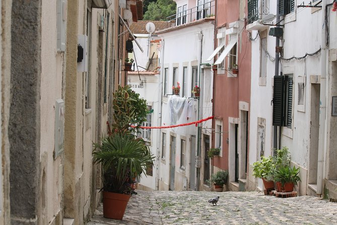 Lisbon Essential Tour: History, Stories, and Lifestyle photo 36