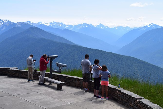 Hurricane Ridge and Marymere Falls Guided Tour in Olympic National Park