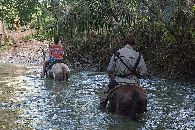 Xunantunich and Horseback Riding from Placencia