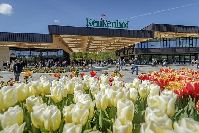 Private Keukenhof Tulip Fields & Millions of Flower Sightseeing Tour From A'dam
