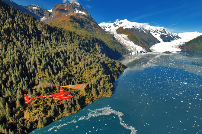 Prince William Sound Tour with Glacier Landing from Girdwood
