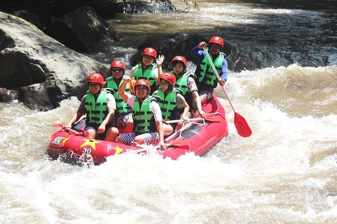 Ayung River Rafting and Besakih Kintamani Tour