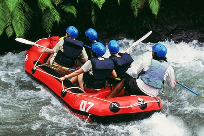 Ayung River Rafting and Besakih Kintamani Tour