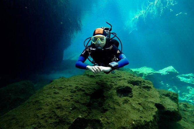 Try dive in beautiful Casa cenote for 2 people