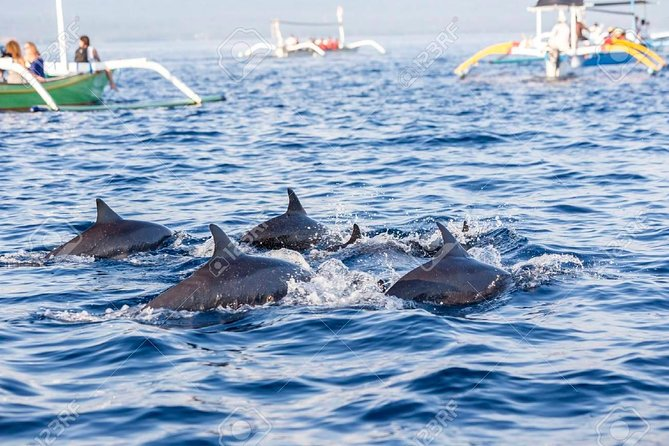 Full-Day Bali Highlights with Dolphin Tour