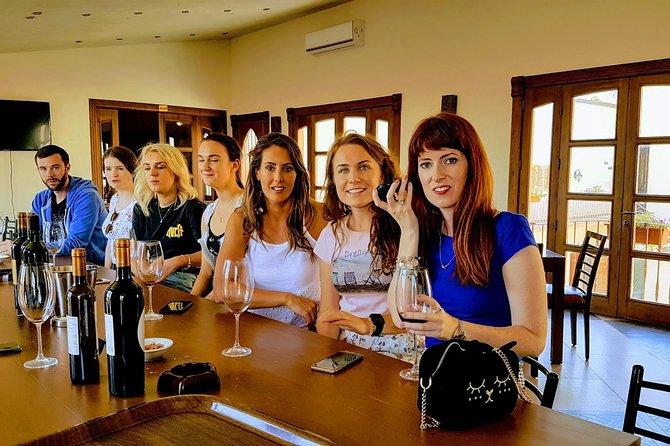 Tour privado de cata de vinos de día completo