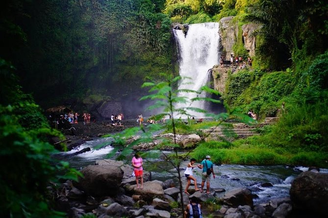Half-Day Private Tour to Exploring Ubud and Waterfall