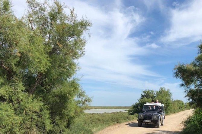 4x4 Camargue Safari 4h - Departure from Arles