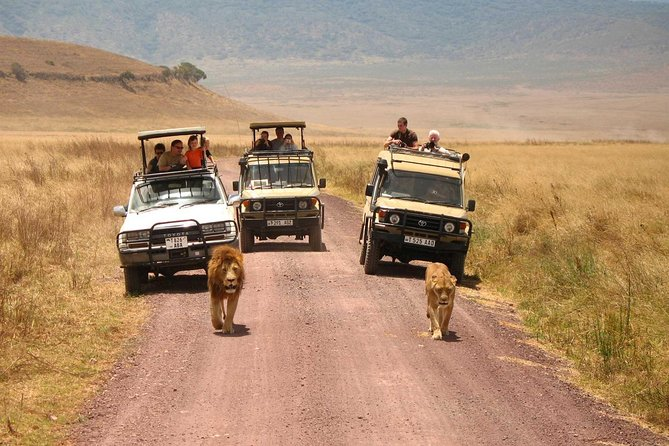 2 Days Lodge Safari; Lake Manyara & Ngorongoro Crater