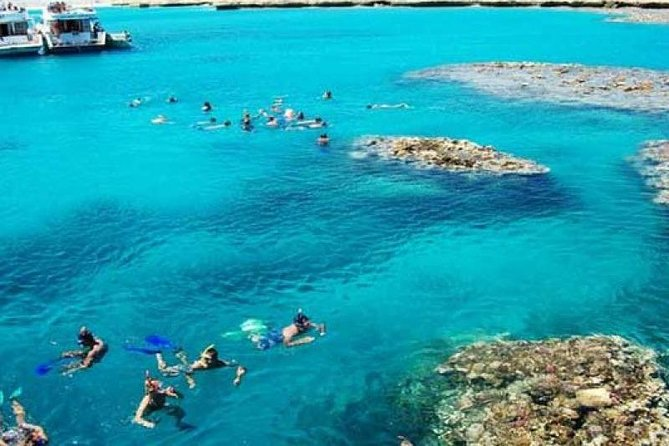Full-Day Private Snorkeling Adventure in Tiran Island by boat
