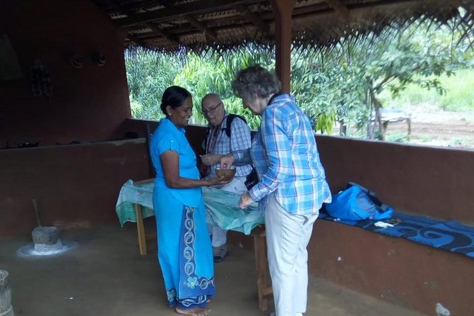 Sigiriya & Dambulla Day Excursion From Negombo