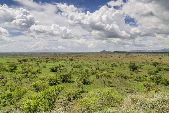 Pian Upe game Reserve