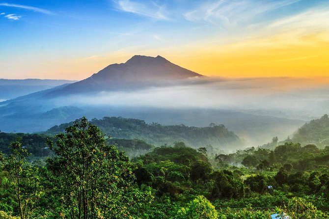 Full-Day Private Tour to Exploring Ubud and Kintamani Volcano