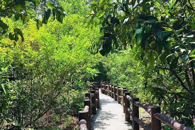 Jungle Tour to Emerald Pool, Krabi Hot Spring and Tiger Cave Temple