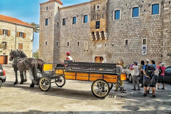 Zinfandel carriage tour