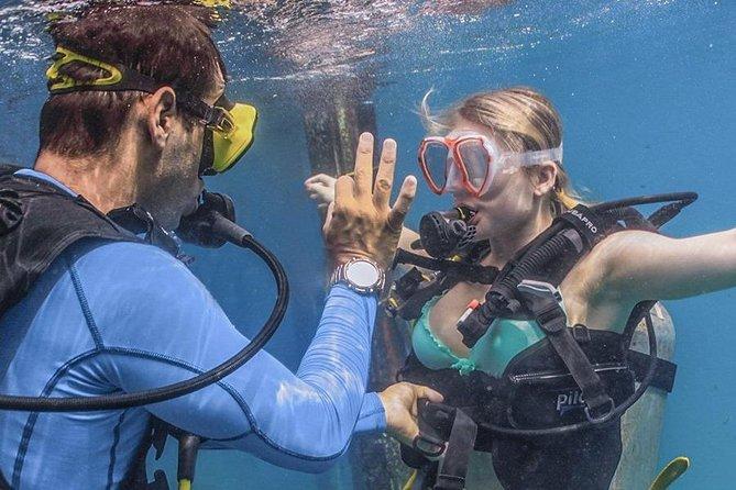 Diving Course in Las Caletas