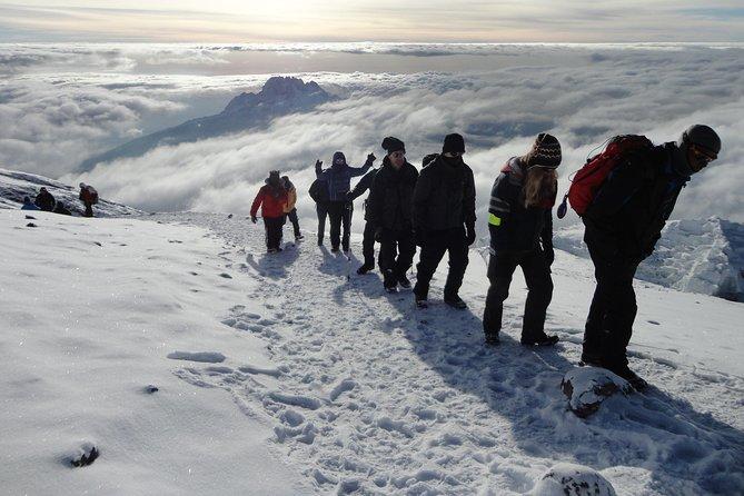 Mount Kilimanjaro 7 Days - Machame Route