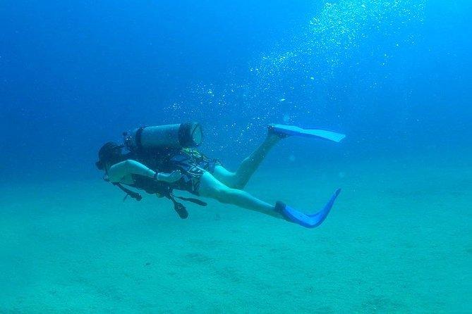 Diving in Los Anegados