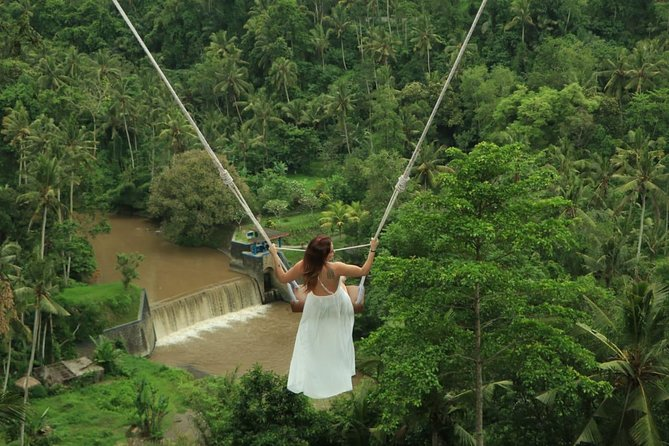 Private Ubud Day Tour with Jungle Swing