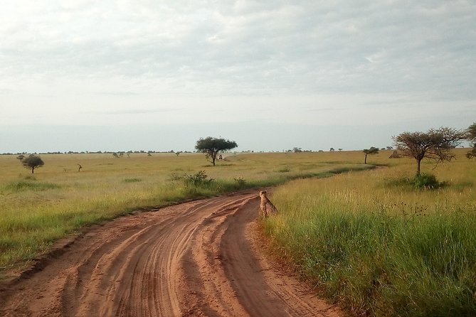 Touch of Wilderness - Mid-Range - 4 Days