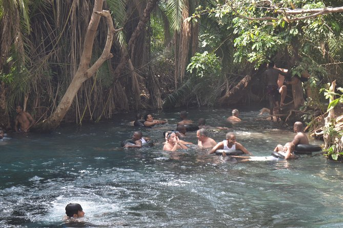 Materuni waterfalls, coffee tour & Chemka (Kikuletwa) hot springs photo 3