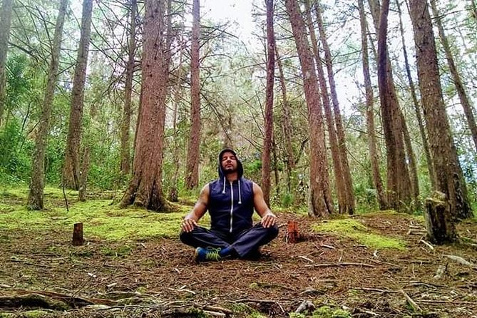 Forest Hiking and mindfulness experience