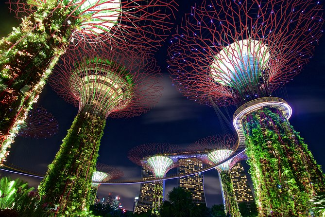 Gardens By The Bay Night Long-Exposure Photography