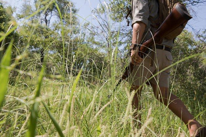 Walking Safari - Wild and Real - 4 Day Safari