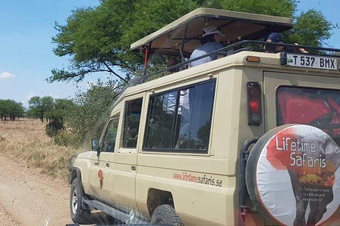 13 Days Tanzania And Kenya Adventure Safari Tours