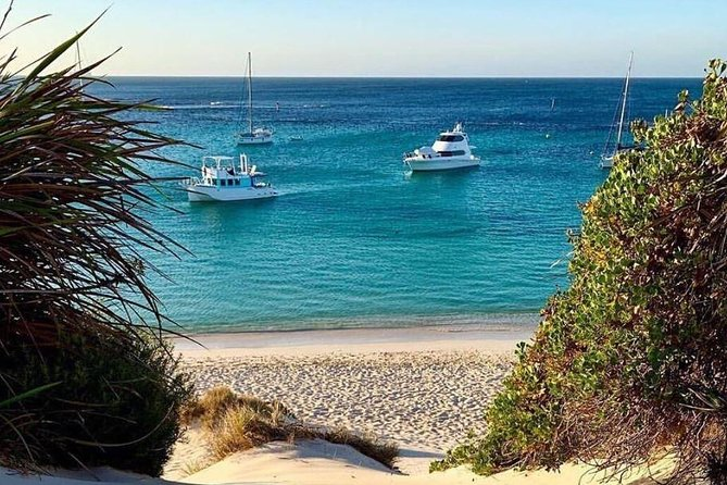 Rottnest Island 5-Course Deluxe Seafood Banquet Cruise photo 16