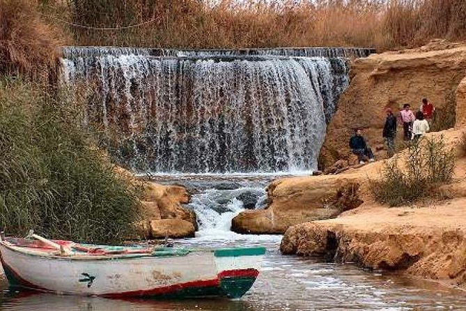 Day tour to the vally of the whales& wadi rayan