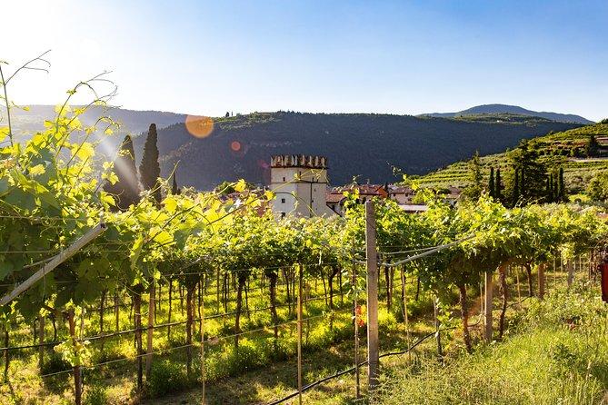 The Valpolicella road from Vine to Wine