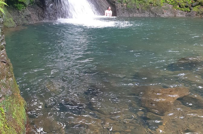 Cruise stopover - Rainforest - Guadeloupe Aquarium - Gosier Beach