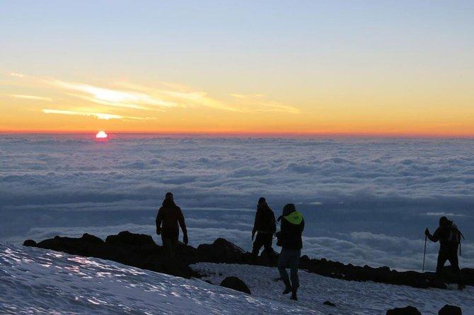 Mount Kilimanjaro 8-Days; Lemosho Route