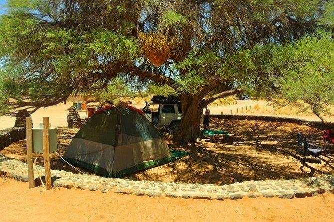 3 Day Namib Desert Camping Tour & Safari