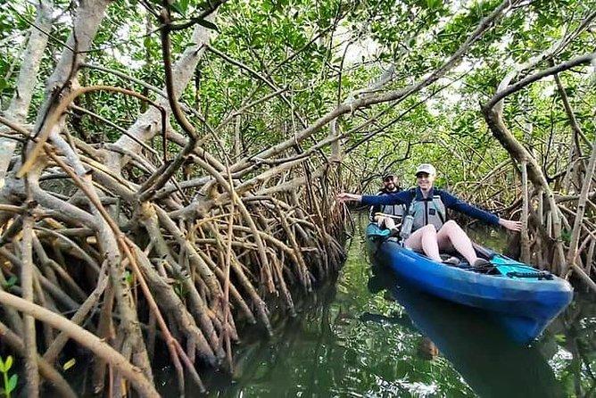 Thousand Islands Mangrove Tunnel Kayak Tour!