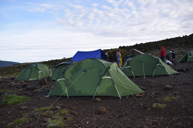 7 Days Mt. Kilimanjaro Machame route