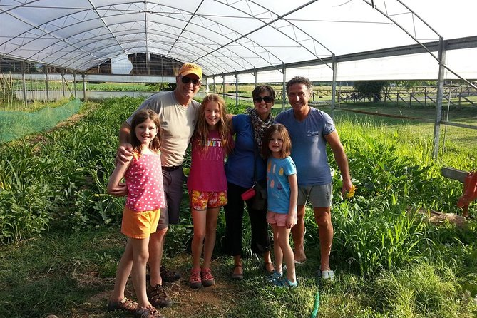 Lucca and organic farm - very easy bike tour
