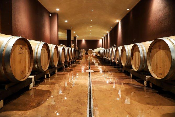 Lake Garda: Wine Tour & Tasting Experience in Bardolino area