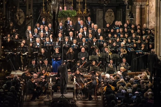 Concert at Vienna's St. Stephen's Cathedral: Mozart / Beethoven / Vivaldi / organ & more