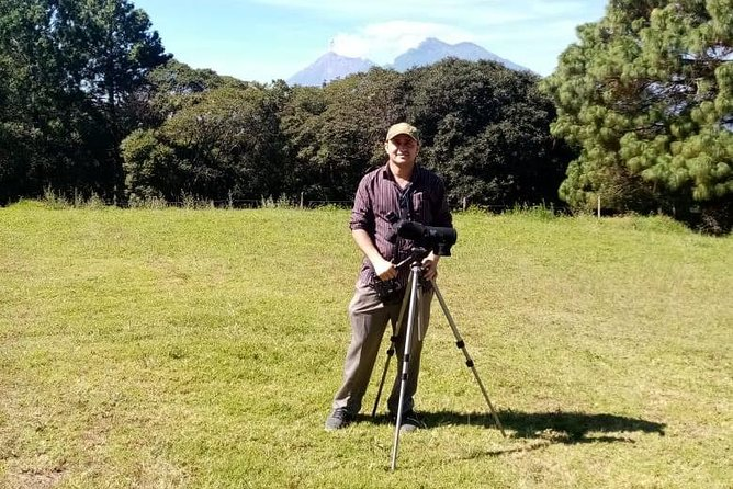 4-7 hour private bird tour in Tikal, Guatemala