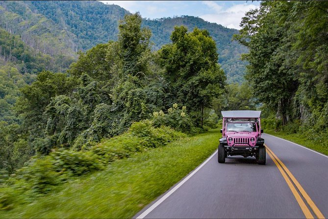 Newfound Gap Smoky Mountains Tour by Open-Air Jeep photo 3