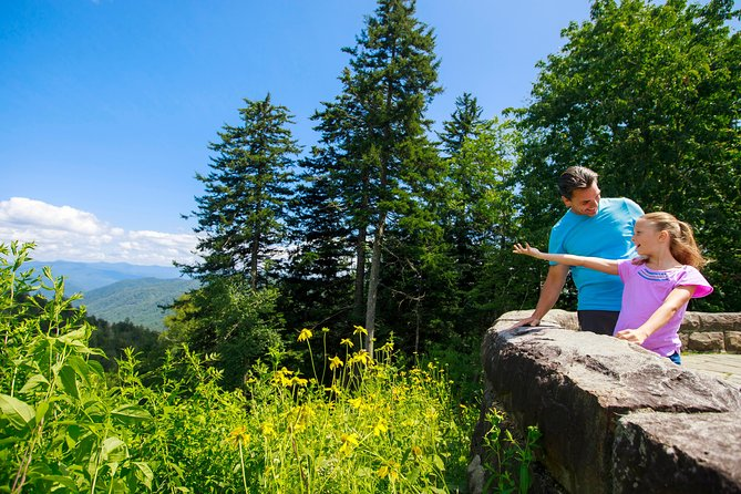 Newfound Gap Smoky Mountains Tour by Open-Air Jeep photo 4